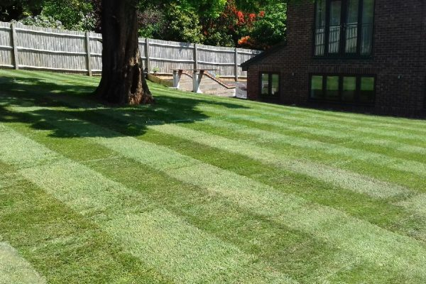 Lawn Mowing in Walsall